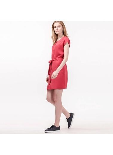 Kısa Kollu Önden Düğmeli Kısa Elbise-Lacoste